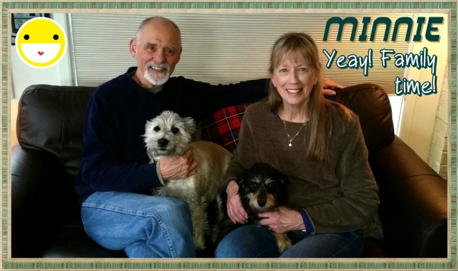 Minnie (Terrier) Adopted