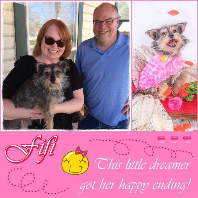 Fifi Adopted