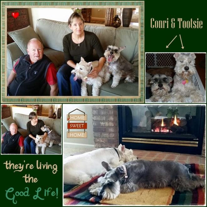 Tootsie & Conri (Adopted!)
