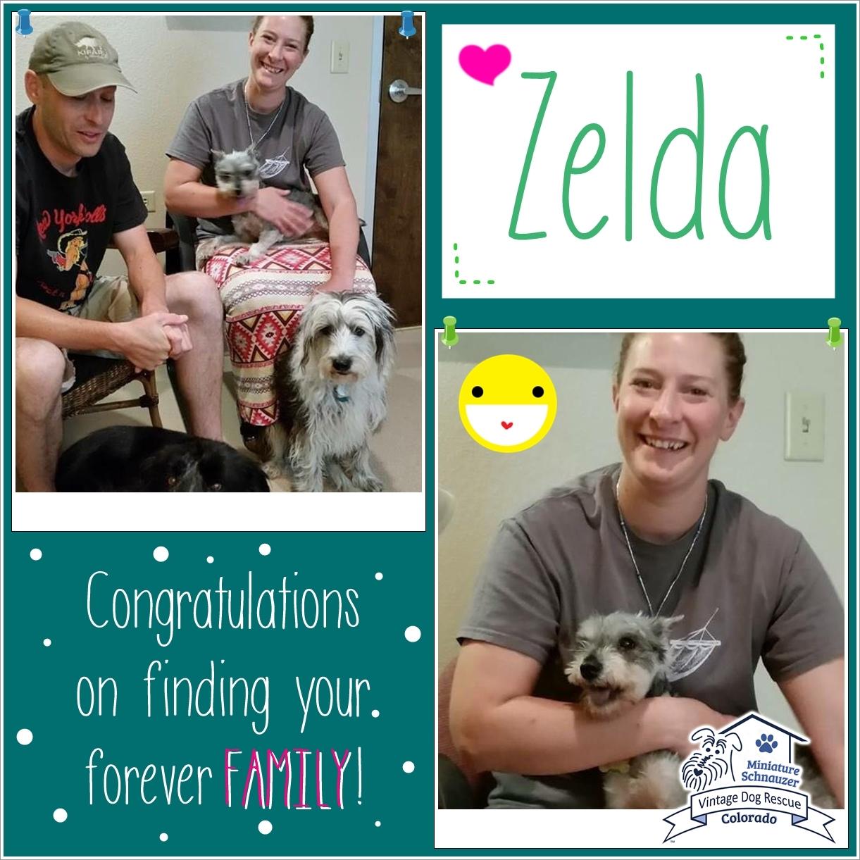 Zelda was adopted!