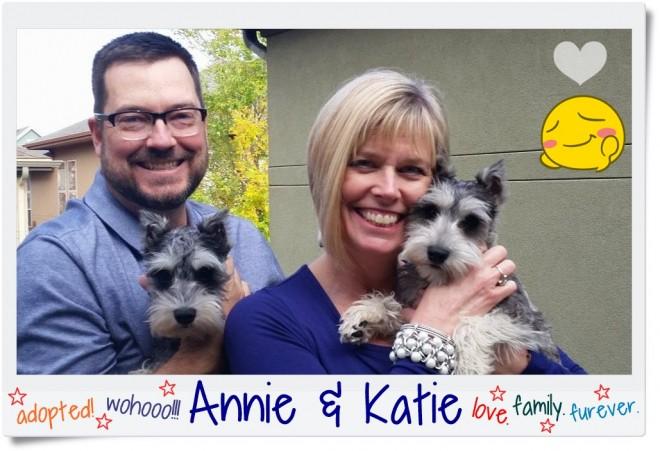 Annie & Katie (Mini Schnauzers) adopted