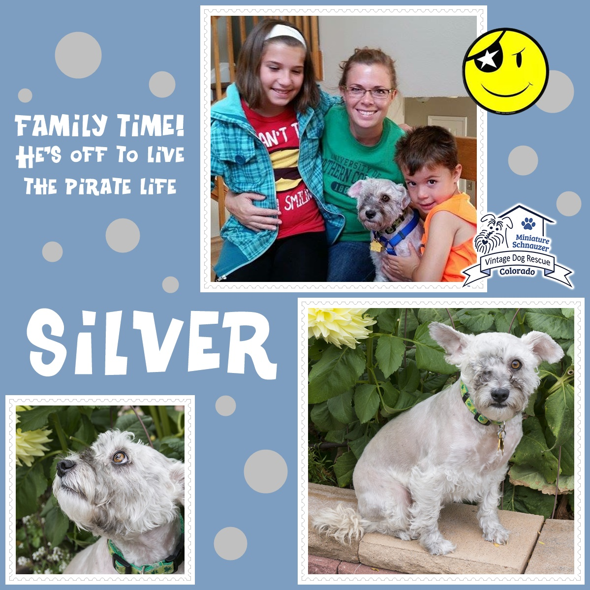 Silver was adopted!