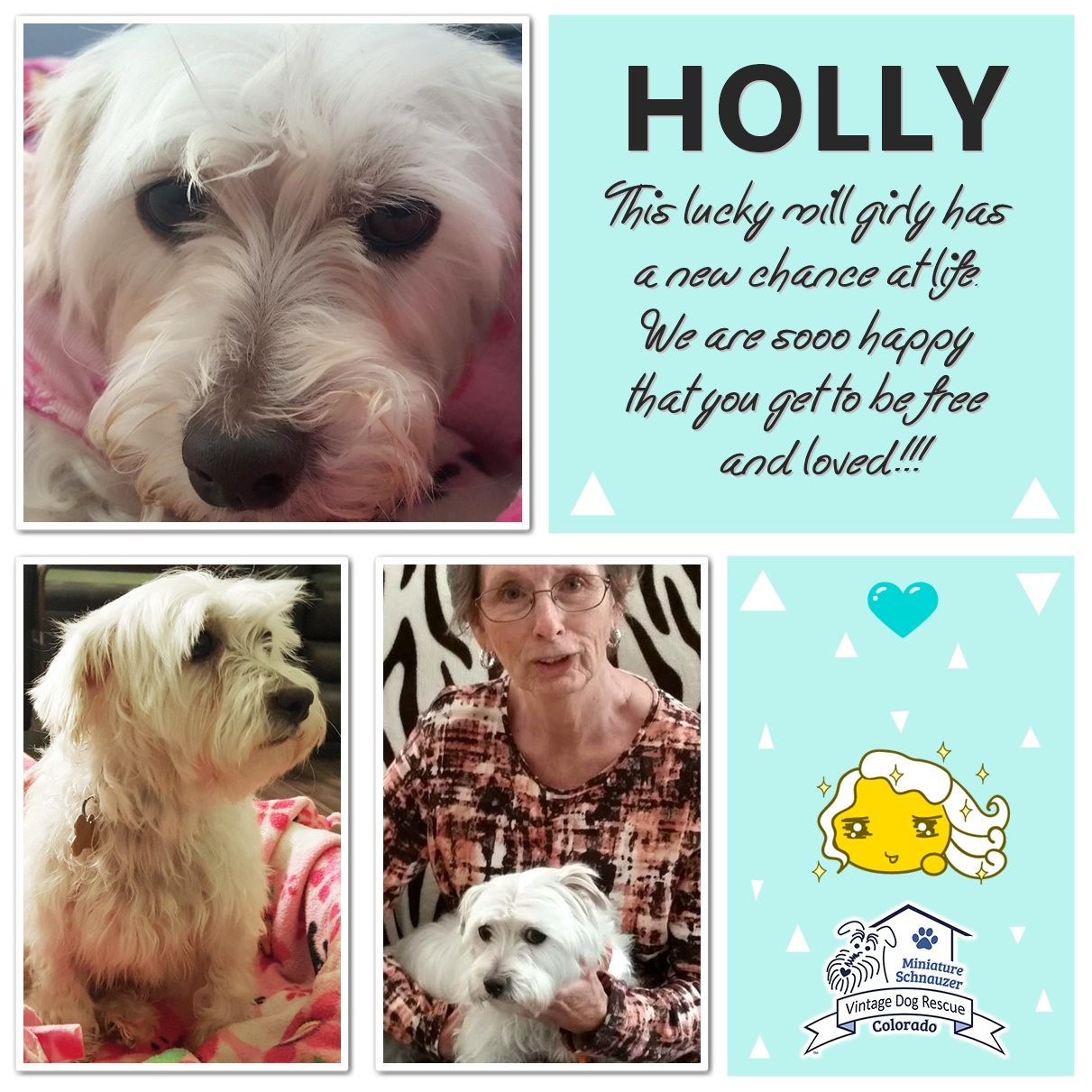 Holly was adopted!