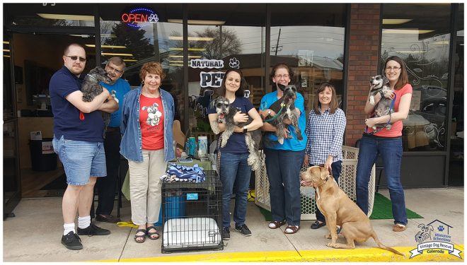 Vintage Dog Rescue Meet & Greet - April 2016