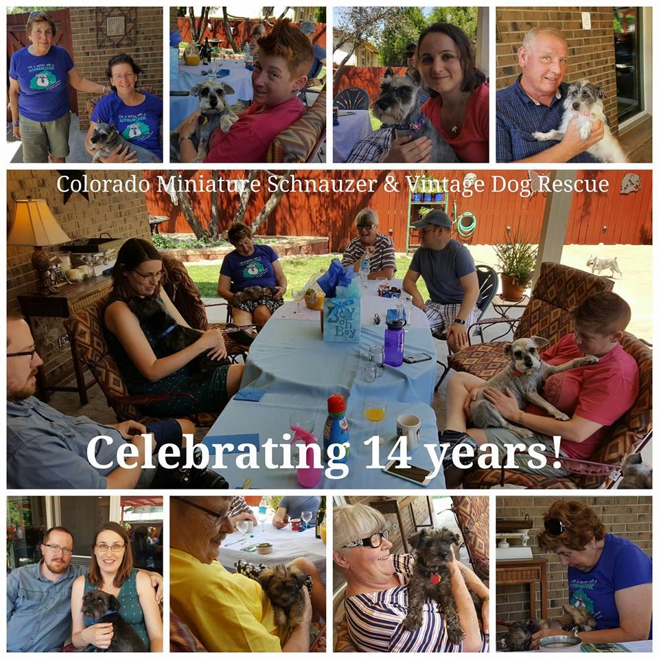 Happy 14th anniversary to the rescue!