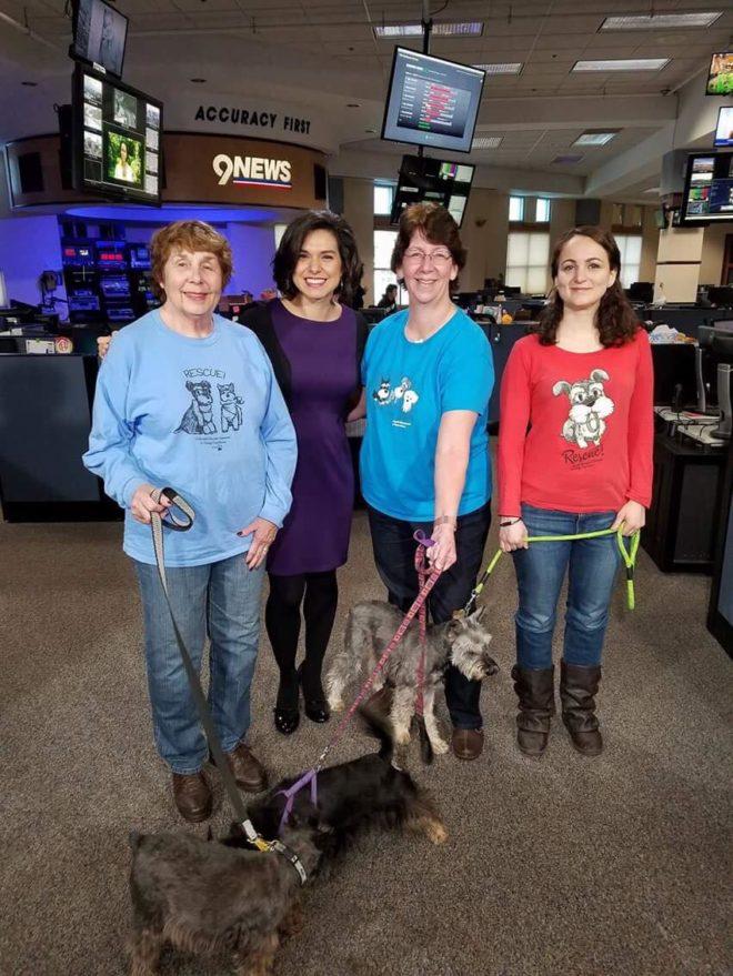 Vintage Dog Rescue (9 News)