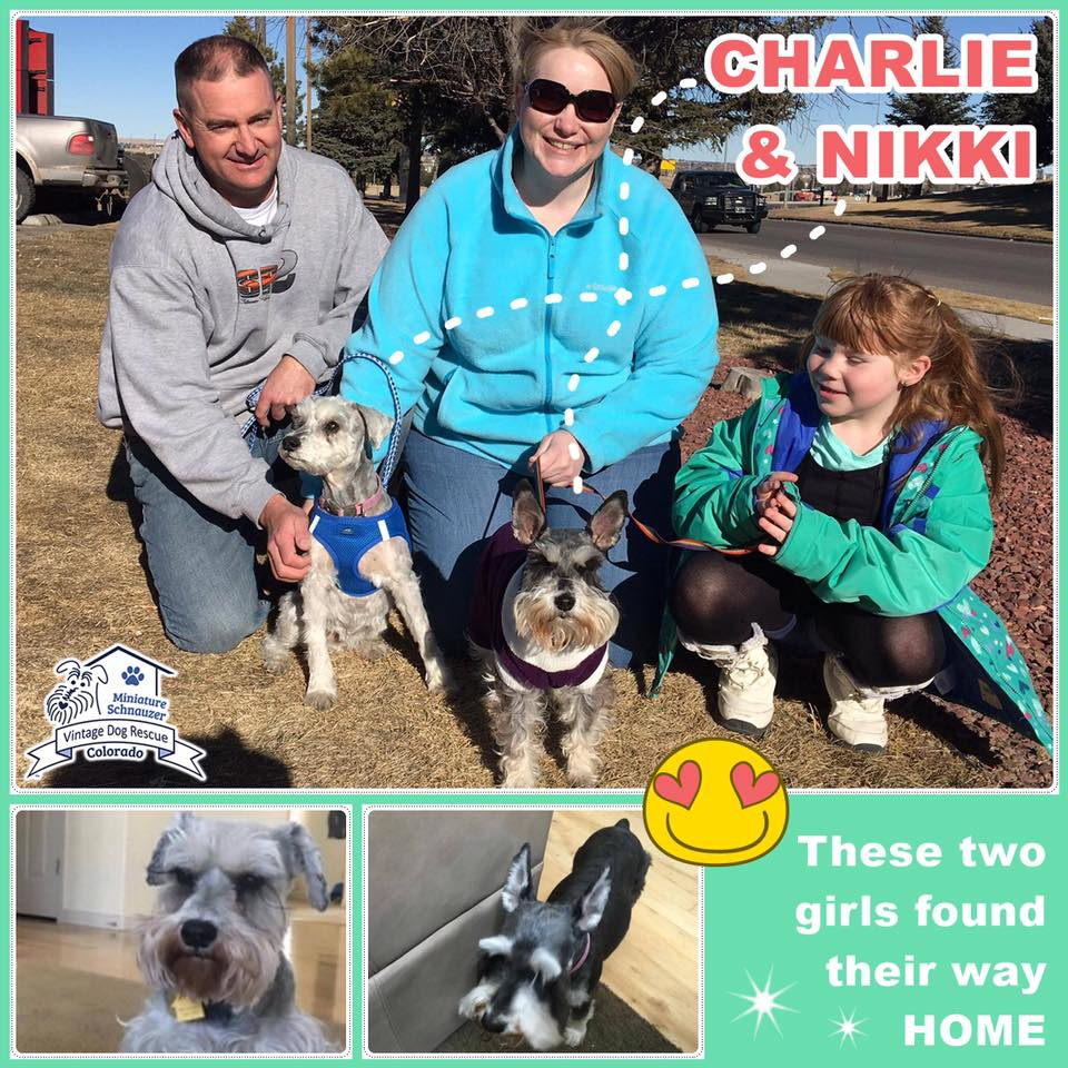 Charlie & Nikki were adopted!