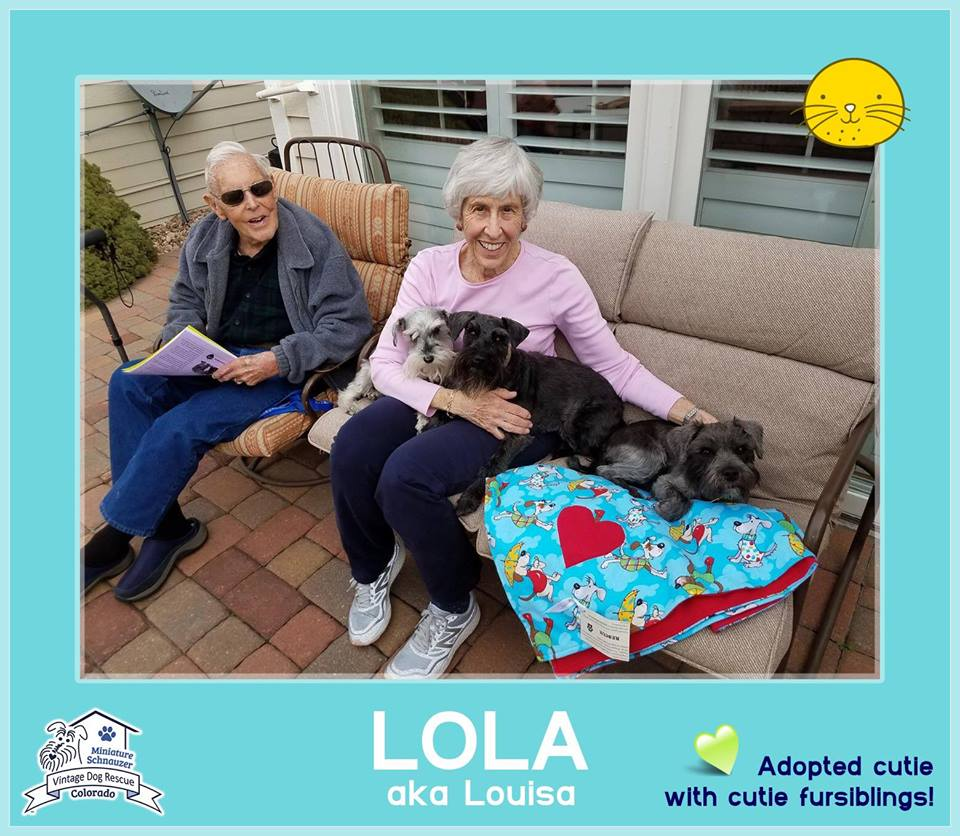 Lola was adopted!
