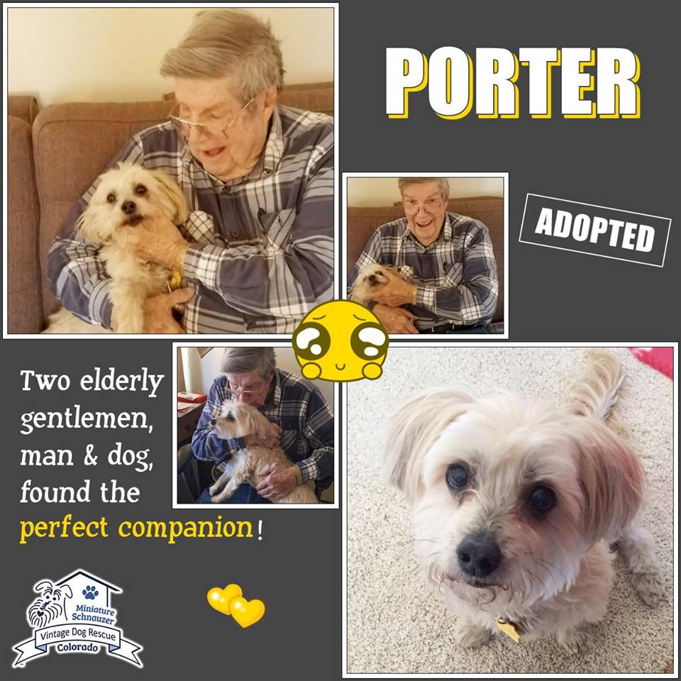 Porter was adopted!
