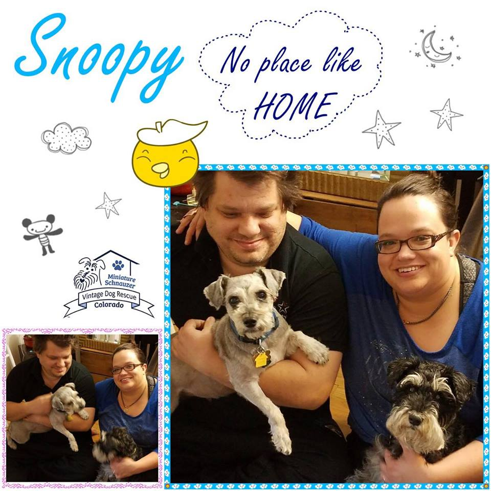 Snoopy was adopted!