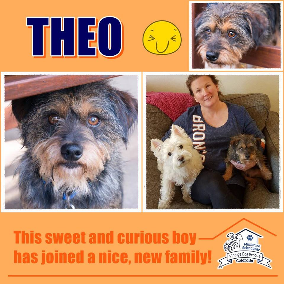 Theo was adopted!