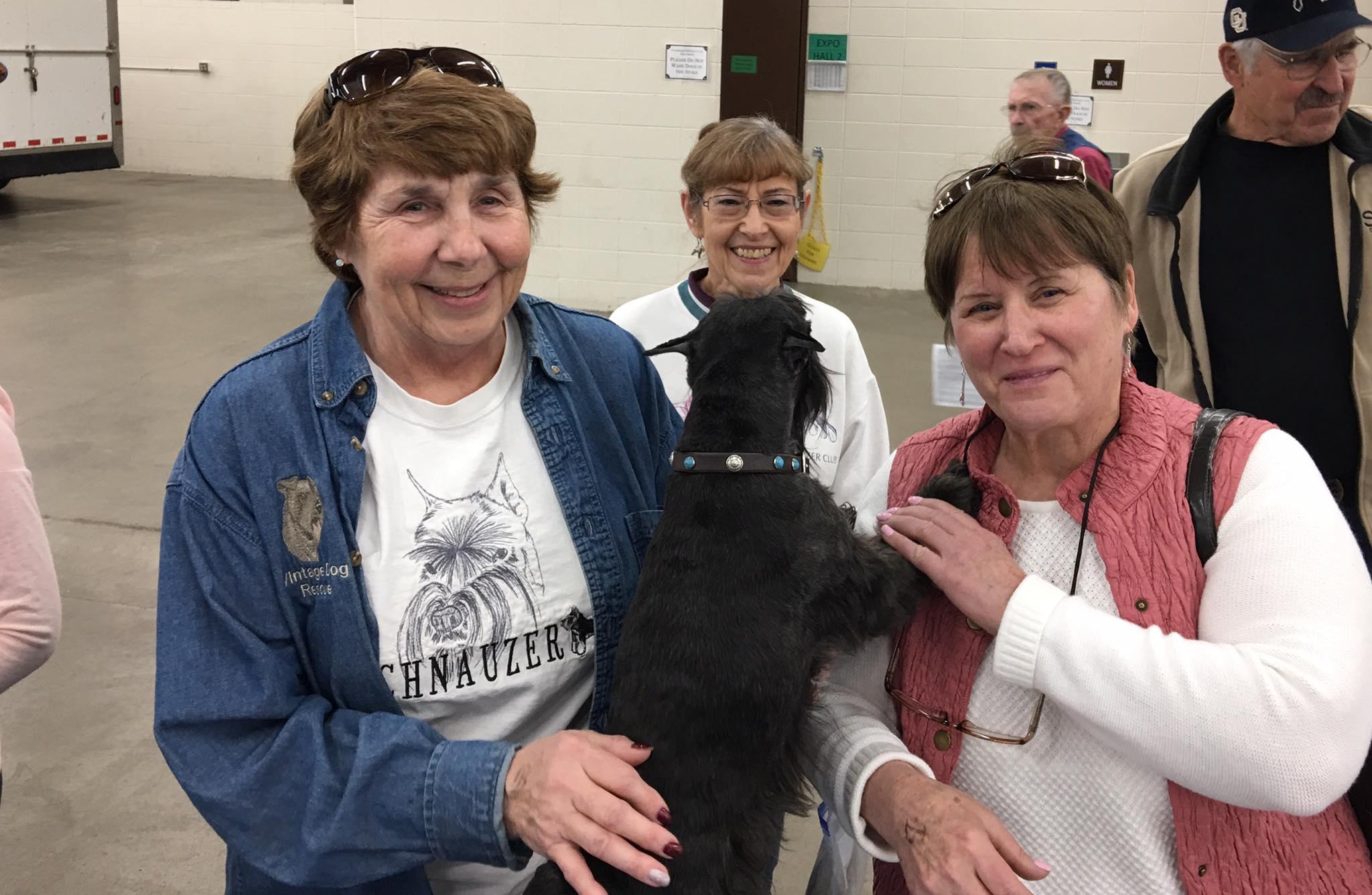 Vintage Dog Rescue at the Denver Dog Show 2017