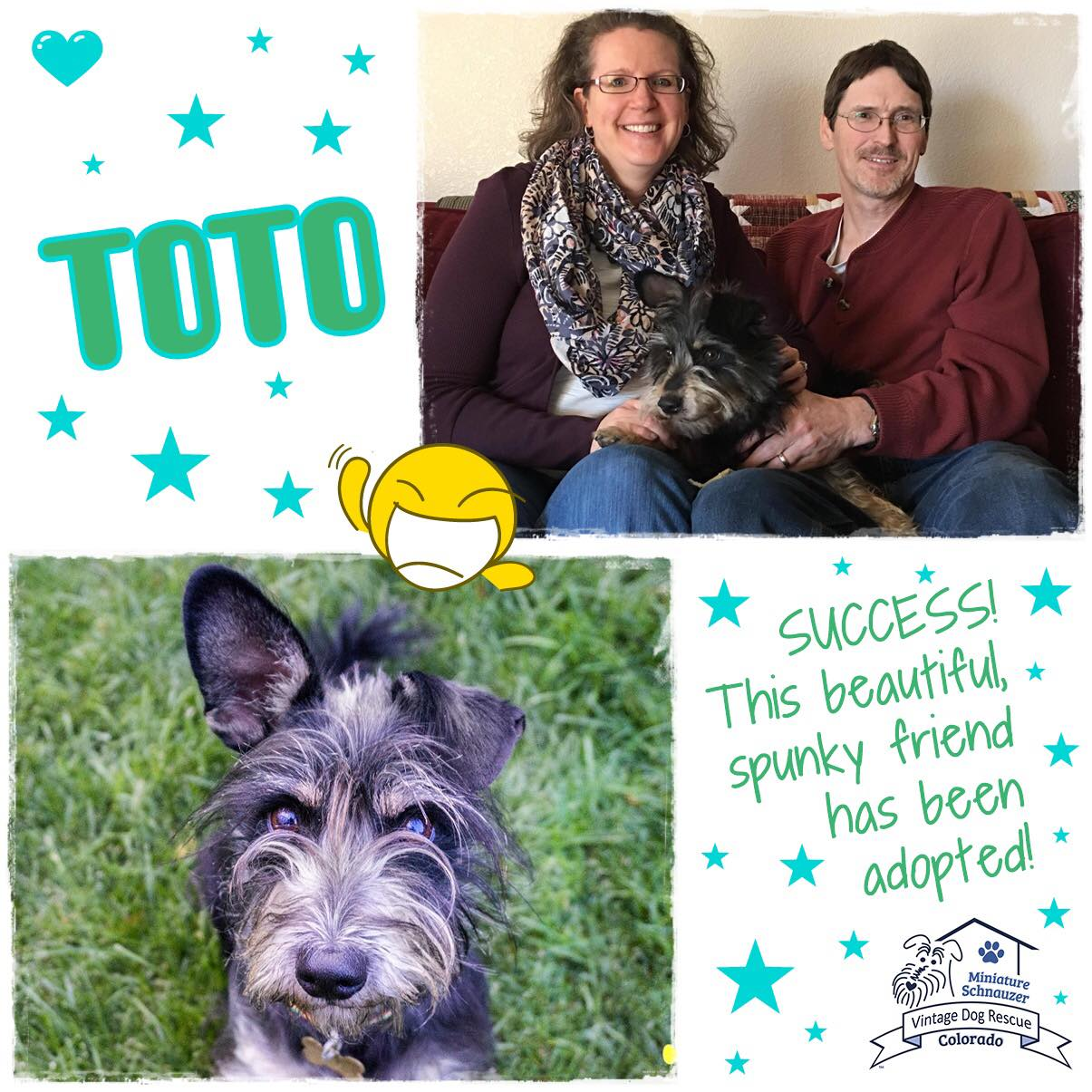 Toto was adopted!