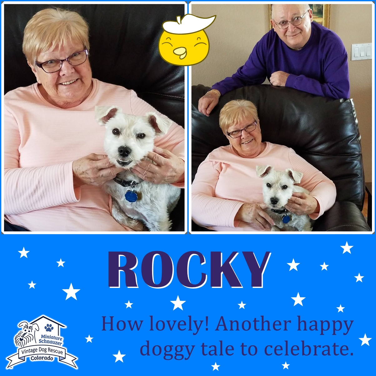 Rocky was adopted!