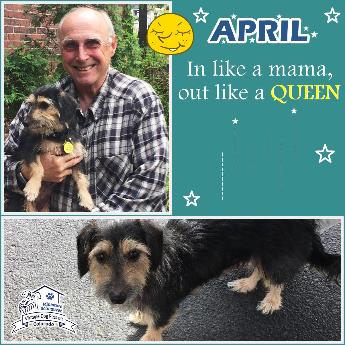 April was adopted!