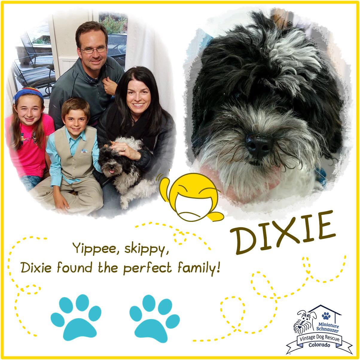 Dixie was adopted!