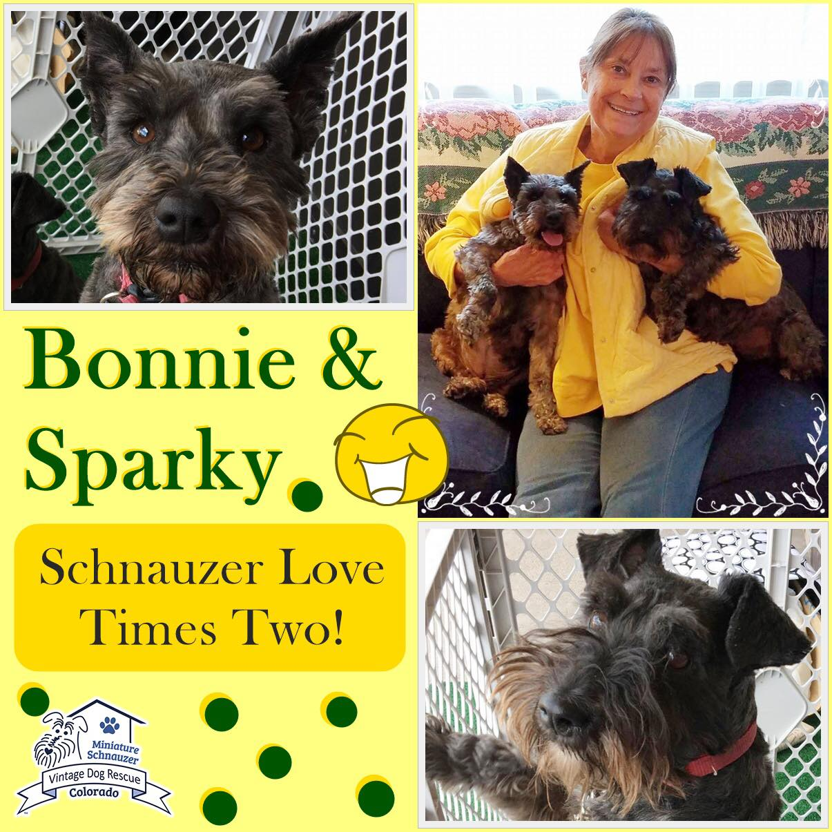 Bonnie & Sparky were adopted!