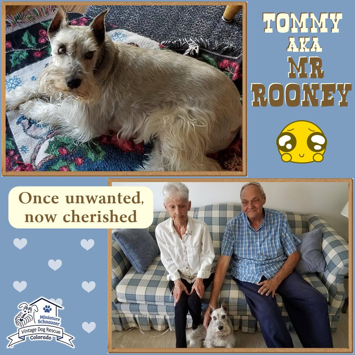 Mr. Rooney was adopted!