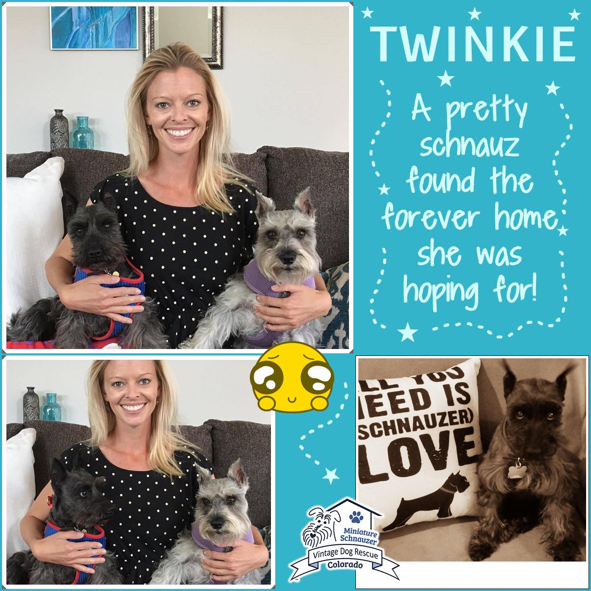 Twinkie was adopted!