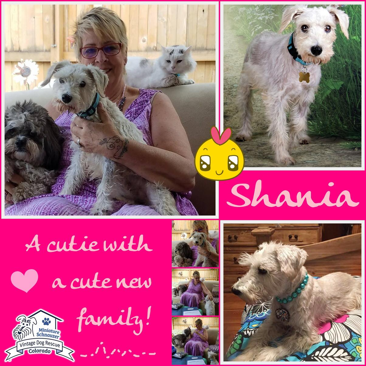 Shania was adopted!