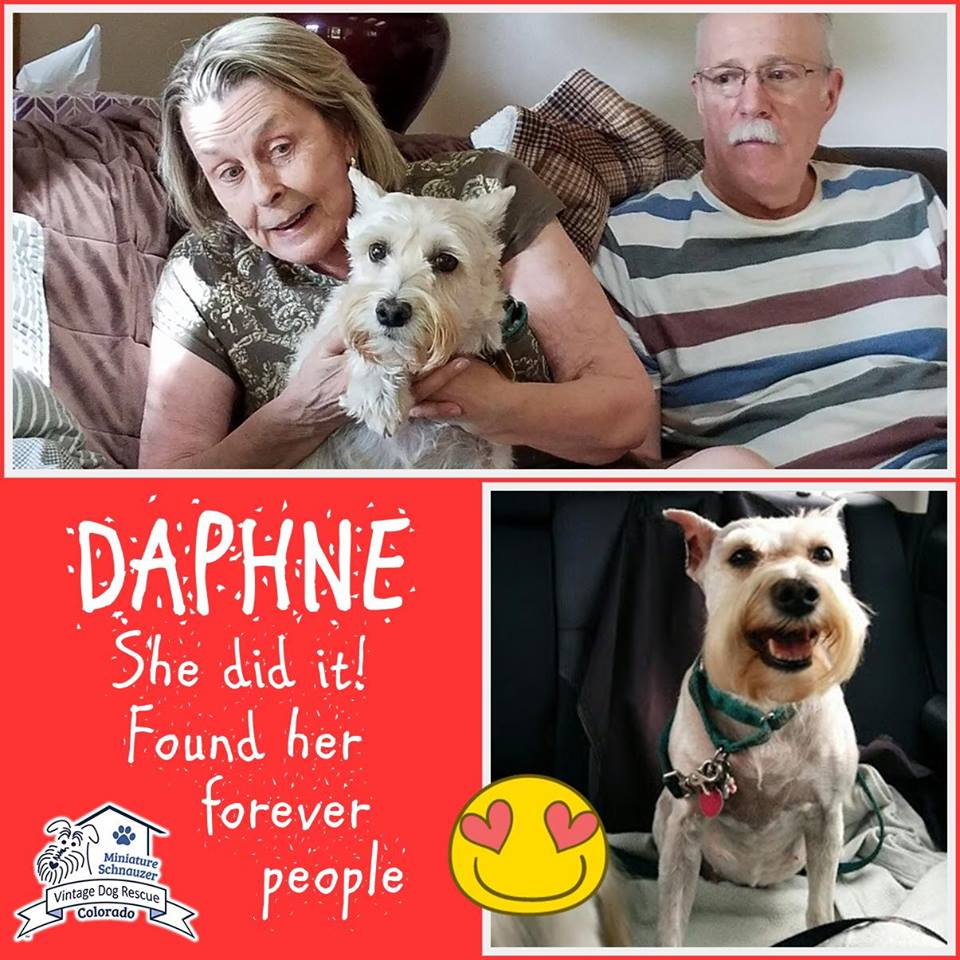Daphne was adopted!