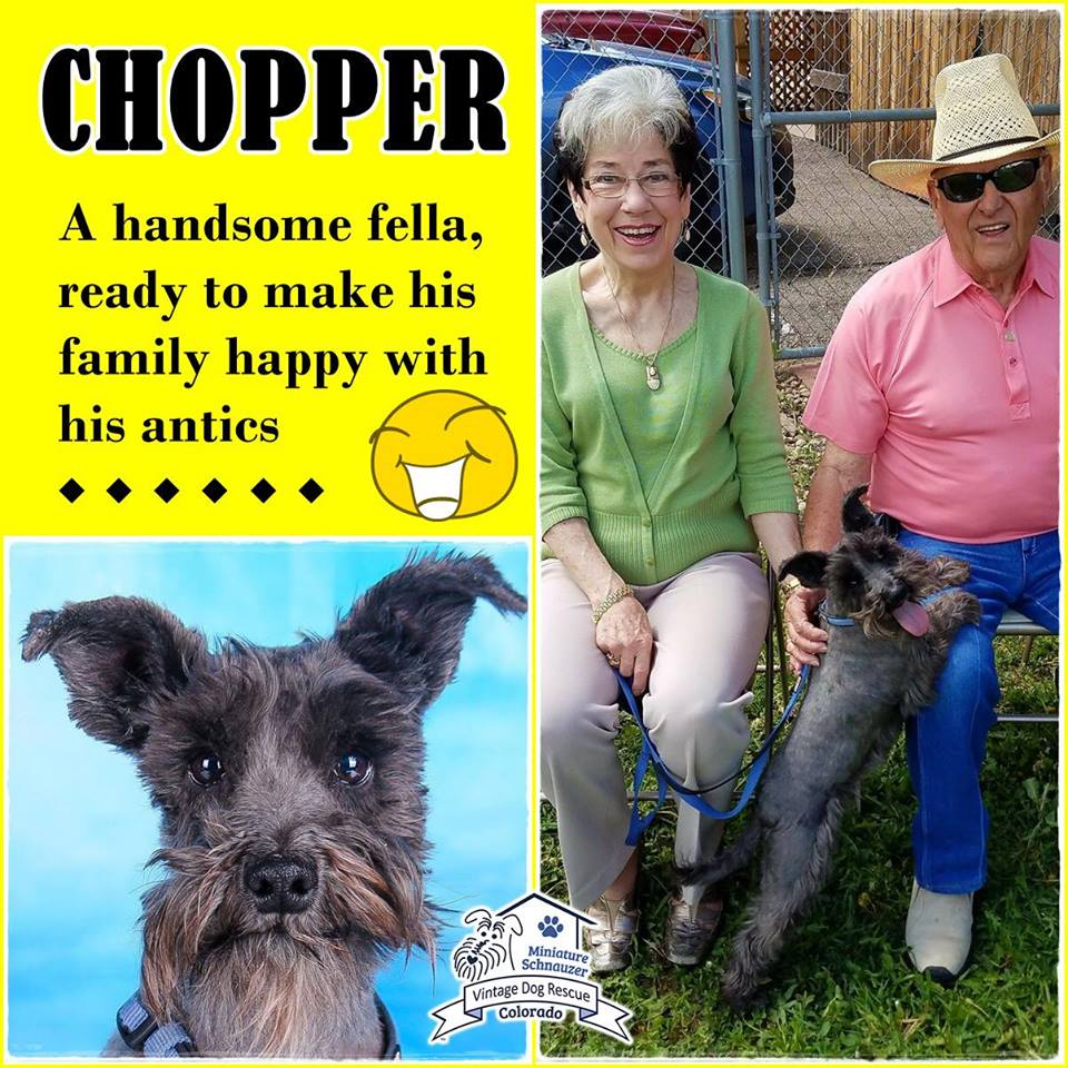Chopper was adopted!